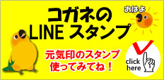 f:id:mikancyama:20190819191337j:plain